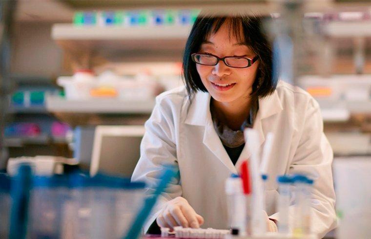 O estresse celular e a pesquisa de doenças