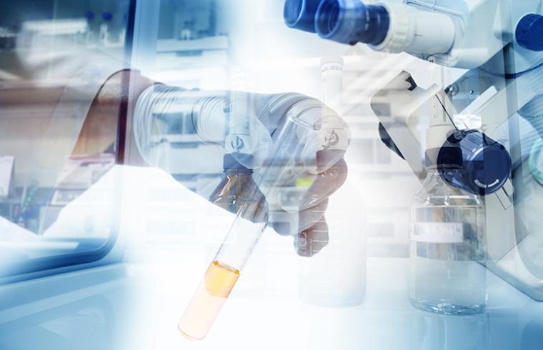 Boas práticas no laboratório de culturas celulares
