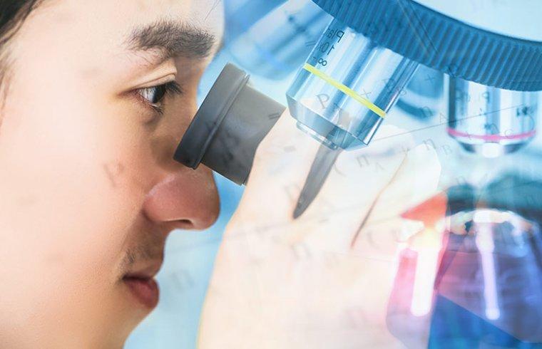 Enzimas para experimentos em bioquímica