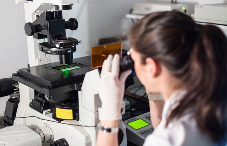 Reagentes para a deteção através da fluorescência