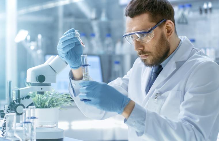 Reagentes para o estudo do metabolismo vegetal
